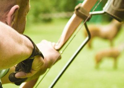3D-Parcours für Bogensport